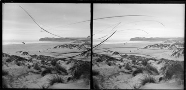 Image: Coastal scene including man with camera and dog, with dunes in the foreground and a distant ship offshore