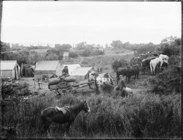 Image: Gum diggers' camp