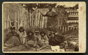 Image: Carnell, Samuel 1832-1920 :Group at Pawhakairo