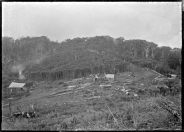 Image: Shanties in a bush clearing, Anawhata