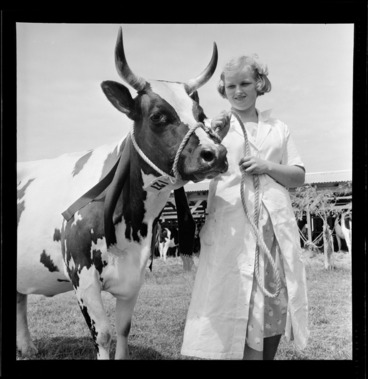 Image: Cattlebeast at Levin Agricultural and Pastoral Show