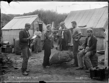 Image: Gum diggers weighing sacks of Kauri gum