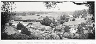 Image: CENTRE OF EXTENSIVE FRUITGROWING DISTRICT: VIEW OF ALBANY, NORTH AUCKLAND.