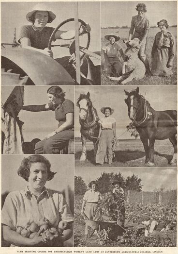 Image: FARM TRAINING COURSE FOR CHRISTCHURCH WOMEN'S LAND ARMY AT CANTERBURY AGRICULTURAL COLLEGE, LINCOLN