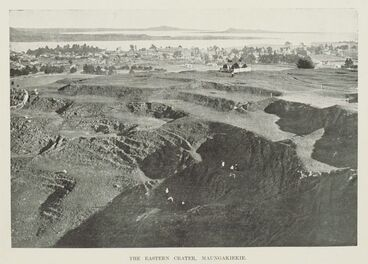 Image: The eastern crater, Maungakiekie.
