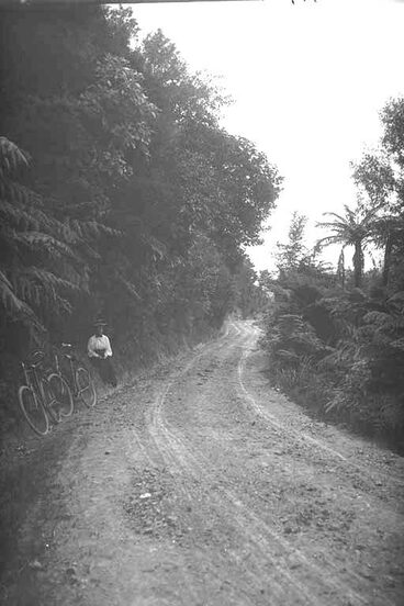 Image: Looking along the north road, Clevedon, showing a woman resting....