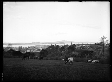 Image: Looking north from Auckland Domain across the harbour to the....