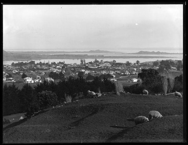 Image: Looking south west by south from One Tree Hill over Onehunga....