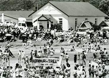 Image: Waitangi Day incidents
