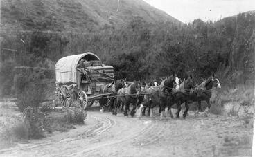 Image: Getting wool to the coast
