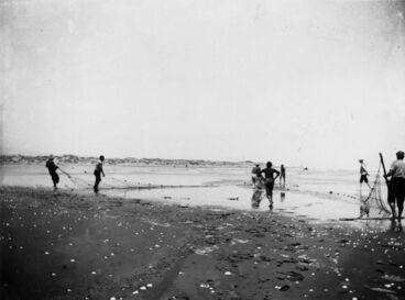 Image: Net fishing, Hokio Beach, 1905