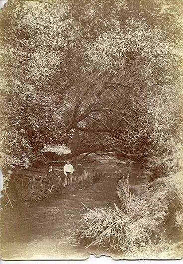 Image: Hokio Stream Eel Weir