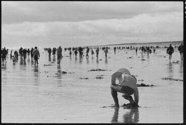 Image: Toheroa gatherers Hokio 1974