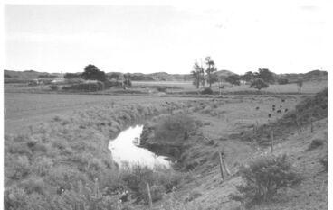 Image: Hokio Stream, looking west downstream, 1977