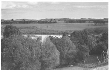 Image: Source of Hokio Stream, behind weir, 1977