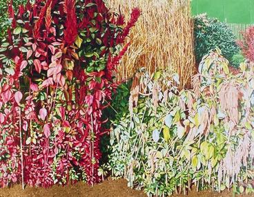 Image: Kew