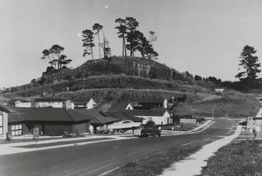 Image: Pigeon Mountain, 1990.