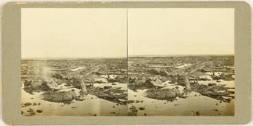 Image: Sunken kauri forest at Ihumatao, Mangere, 1923