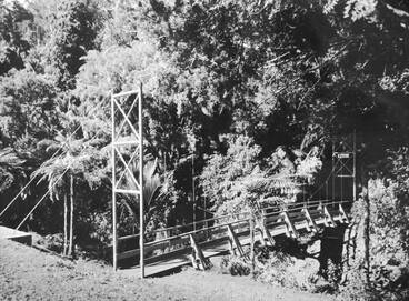 Image: Swing bridge, Cascade Kauri Park.