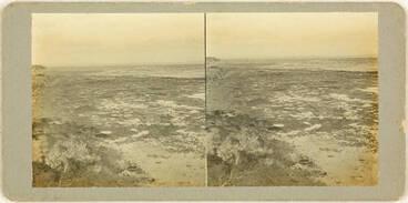 Image: Sunken kauri forest at Ihumatao, Mangere, 1923.