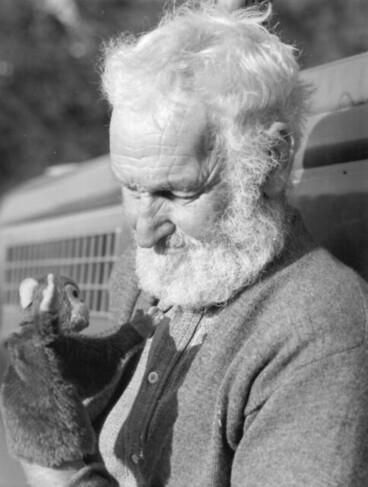 Image: Old Man with Beard