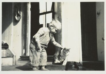 Image: Boy on back porch, Northland