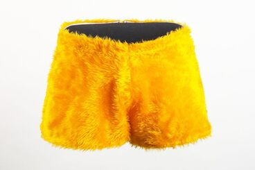 Image: Man's shorts