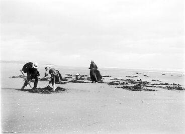 Image: Digging for Toharoas - Hokio Beach