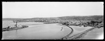 Image: Dunedin from Logans Point