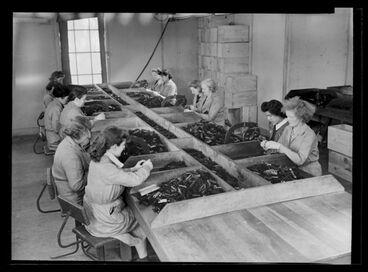 Image: Women working metal punches - World War II production