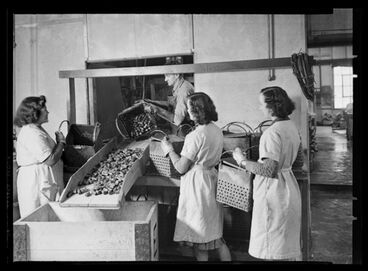 Image: Women loading baskets with canteen corks - World War II production