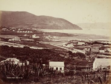 Image: Dunedin from View St
