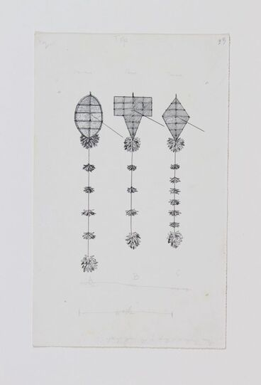 Image: Drawings of kites (for Games and Pastimes of the Maori by Elsdon Best)