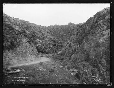 Image: On Paekakariki Hill