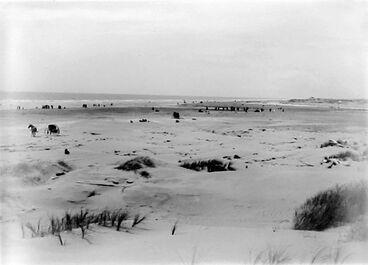 Image: Hokio Beach - Horowhenua