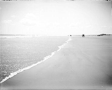 Image: Hokio Beach