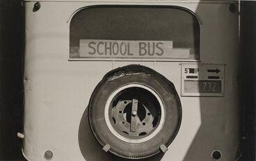 Image: Bus, Coromandel