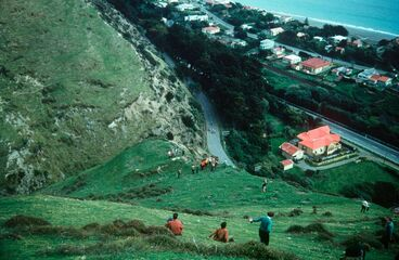 Image: Archaeological party at lunch on crest of inland cliff directly above Paekakariki railway station