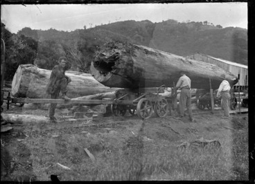 Image: Men unloading huge logs off a railway wagon, on the railway track outside Piha timber mill.