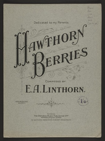 Image: Hawthorn berries / composed by E.A. Linthorn.