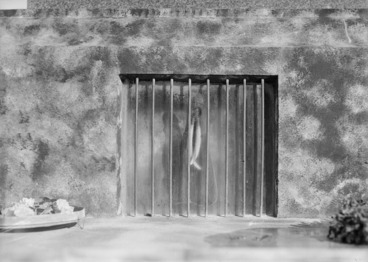 Image: Entrance to the tomb of Te Whiti-o-Rongomai at Parihaka, Taranaki
