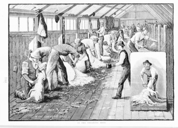 Image: Illustrated New Zealand News :In the shearing shed. The 'Ross' shearer. 24 December 1883