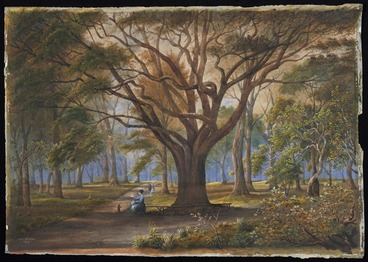Image: Sharpe, Alfred, 1836-1908: Auckland Domain