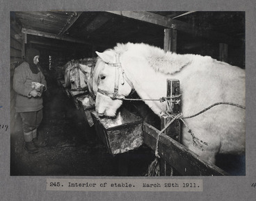 Image: Interior of the stable, Antarctica.