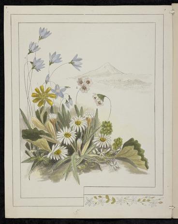 Image: Harris, Emily Cumming 1837?-1925 :Flowers from Mount Egmont. 1. Ranunculus pinguis. 2. Fostera [sic] tenella. 3. Celmisia longifolia. 4. Wahlenbergia gracilis. 5. Lobelia. [189-?].