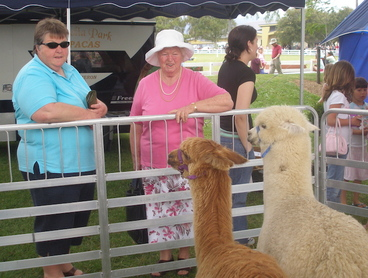Image: Photograph of two women at Horowhenua A & P Show, Levin