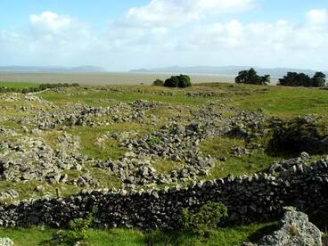 Image: Ōtuataua stonefields