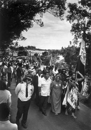 Image: Waitangi protest