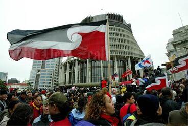 Image: Tino rangatiratanga flags at Parliament