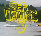 Image: Sea Urchins